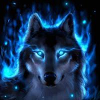 امین گرگینه